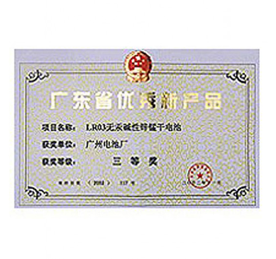 LR03 Size Battery won Guangdong Excellent New Product Certificate in 2002.